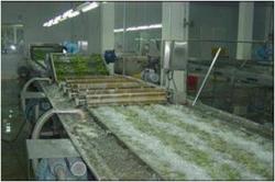 山東果蔬加工設備